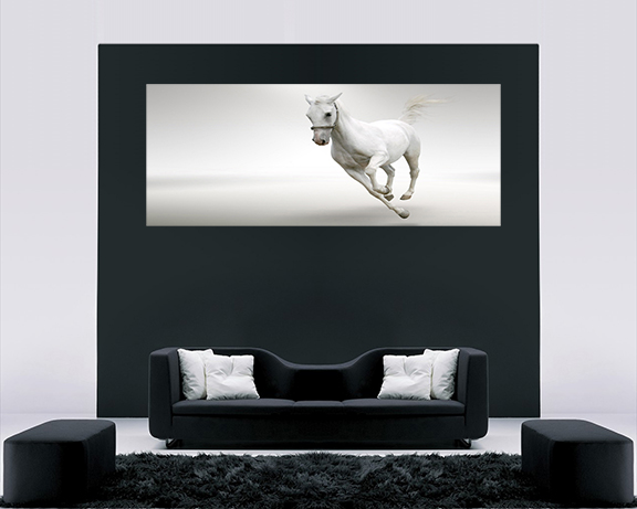 LARGE RUNNING WHITE HORSE WALL ART CANVAS PICTURE 40 X
