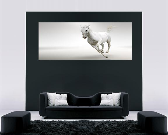 White horse over sofa