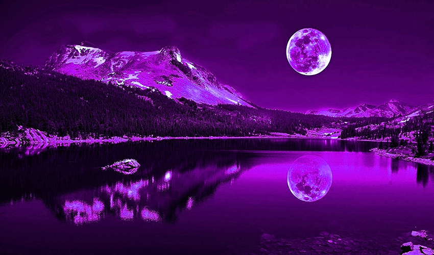 Purple Plum Moonlit Lake Cotton Canvas Wall Art Picture