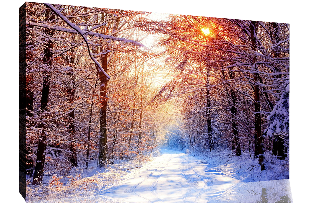E Forest Snow Scene Art Print Home Decor Wall Art Poster